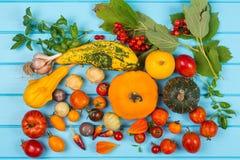 Fundo vegetal Pimentos, tomates, manjericão, abobrinha, abóbora, especiarias e tempero frescos no fundo de madeira azul Foo orgân Imagem de Stock
