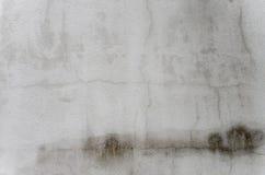 Fundo velho branco da parede Fotos de Stock Royalty Free