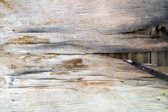 Fundo velho da madeira compensada Imagens de Stock