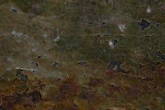 Fundo velho da parede do grunge marrom fresco foto de stock royalty free