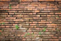 Fundo velho da textura da parede de tijolo vermelho Fotografia de Stock