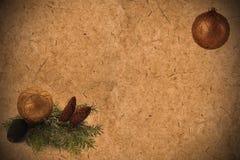 Fundo velho Textured do papel do grunge com os cones do pinho, coníferos Imagens de Stock