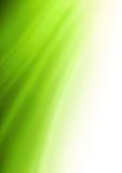 Fundo verde abstrato Fotos de Stock