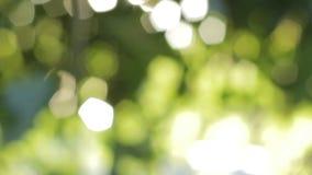 Fundo verde abstrato vídeos de arquivo