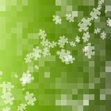 Fundo verde abstrato da serra de vaivém Foto de Stock Royalty Free