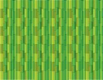 Fundo verde abstrato usando muitos bambus retos para o vetor da apresentação ilustração stock