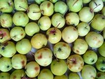 Fundo verde-amarelo da maçã Imagem de Stock Royalty Free