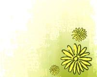 Fundo verde com desenho ilustração royalty free