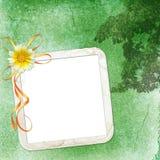 Fundo verde com frame Imagens de Stock Royalty Free