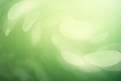 Fundo verde com luzes mágicas anormais do bokeh Fotos de Stock
