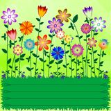 Fundo verde com os prados do ornamento com flores Fotos de Stock