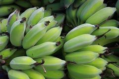 Fundo verde da banana Imagens de Stock