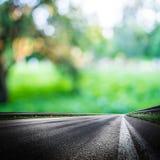 Fundo verde da estrada de floresta Imagem de Stock Royalty Free
