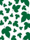Fundo verde 02 da folha Imagens de Stock