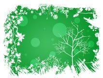 Fundo verde da mola Fotografia de Stock