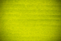 Fundo verde da textura da folha da banana Fotos de Stock