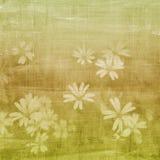 Fundo verde das flores Fotografia de Stock