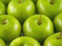 Fundo verde das maçãs Imagem de Stock Royalty Free
