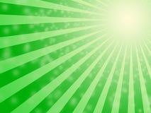 Fundo verde do bulbo do sol Foto de Stock