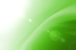 Fundo verde do sumário e da luz do sol Imagens de Stock