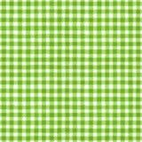 Fundo verde e branco da manta Imagem de Stock