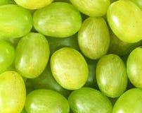 Fundo verde fresco das uvas Imagens de Stock Royalty Free