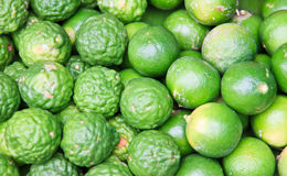 Fundo verde fresco do cal do limão Fotografia de Stock Royalty Free