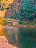 Fundo verde original criado por reflexões japonesas da lagoa Imagem de Stock