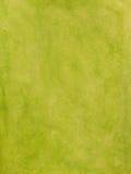 Fundo verde pintado Fotografia de Stock