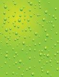 Fundo verde sem emenda com gotas da água Imagem de Stock Royalty Free