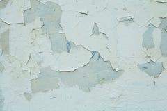 Fundo verde velho da parede das texturas Fundo perfeito imagens de stock royalty free