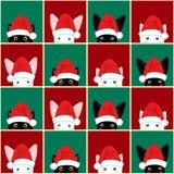 Fundo verde vermelho do Natal branco preto da placa de Cat Rabbit Chess seamless ilustração stock