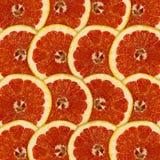 Fundo vermelho abstrato com citrinas da pamplumossa Fotos de Stock