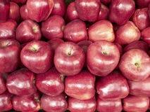 Fundo vermelho das maçãs Fotografia de Stock