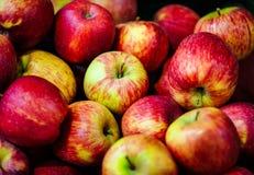 Fundo vermelho das maçãs de Clorfull Foto de Stock Royalty Free