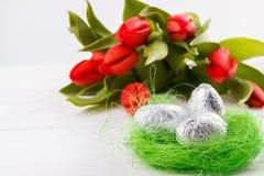 Fundo vermelho das tulipas Imagens de Stock Royalty Free