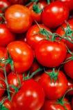 Fundo vermelho dos tomates Grupo de tomates Fotos de Stock Royalty Free