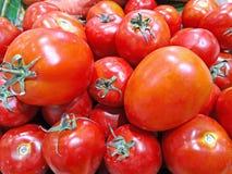 Fundo vermelho dos tomates na bandeja no mercado Grupo de tomates imagem de stock