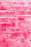 Fundo vermelho e cor-de-rosa do textute da parede de tijolo Fotos de Stock
