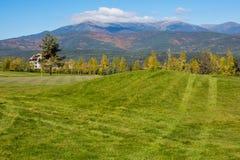 Fundo vibrante da natureza com as árvores coloridas do outono, campo de grama do golfe e as bandeiras verdes, amarelos Imagens de Stock Royalty Free