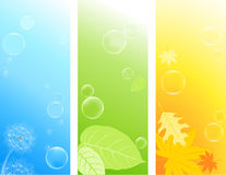 Fundos coloridos da natureza Imagem de Stock