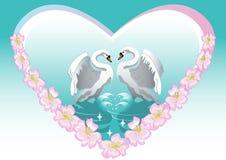 Fundos da cisne ilustração royalty free