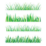 Fundos da grama verde isolados na ilustração branca do vetor Fotografia de Stock