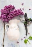Fundos da mola, lilás, tesouras de jardim e vaso Fotos de Stock Royalty Free