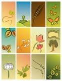 Fundos da natureza ilustração royalty free
