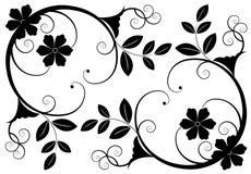 Fundos florais Imagem de Stock