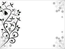Fundos florais preto e branco Fotos de Stock