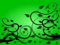 Fundos florais verdes Fotos de Stock