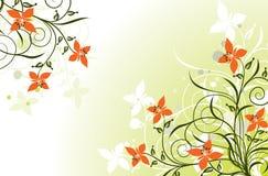 Fundos florais, vetor Imagens de Stock