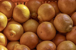 Fundos, fruto maduro, cor natural Imagens de Stock Royalty Free